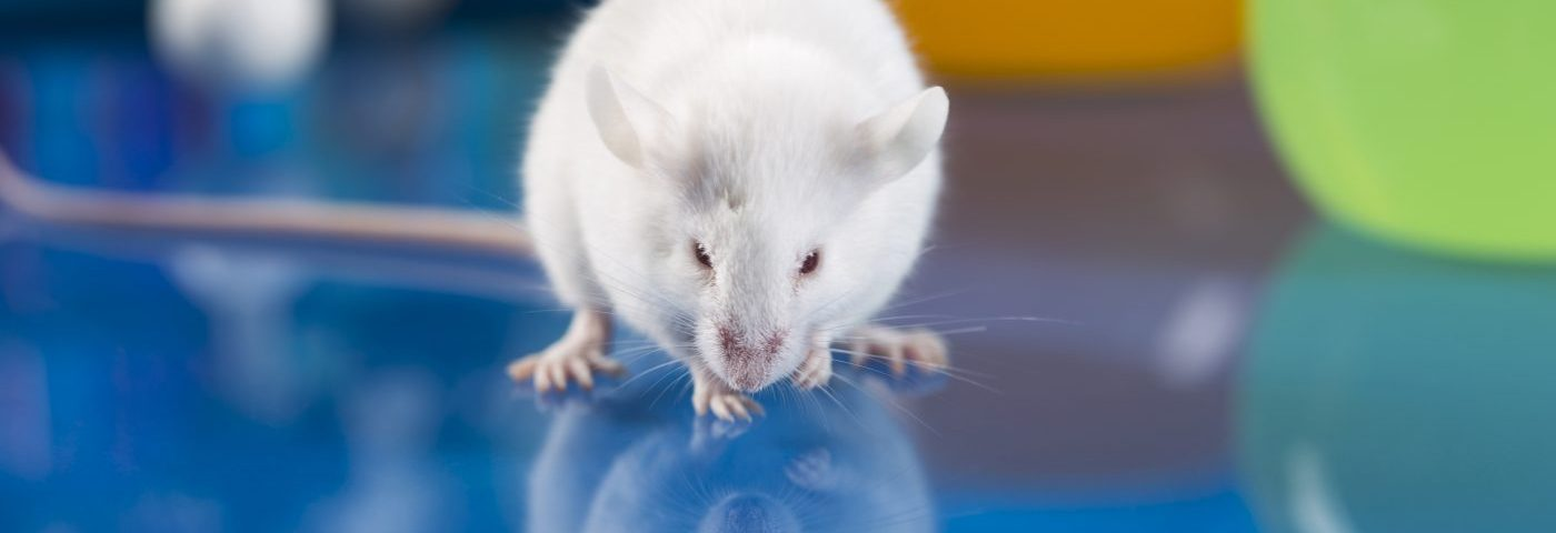 New Low-dose Irradiation Therapy Combo Shows Positive Effects in Fibromyalgia Animal Model